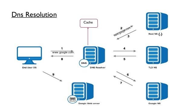 DNSSEC Info